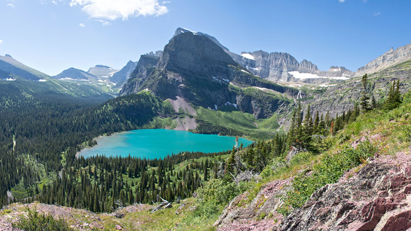 most environmental states montana