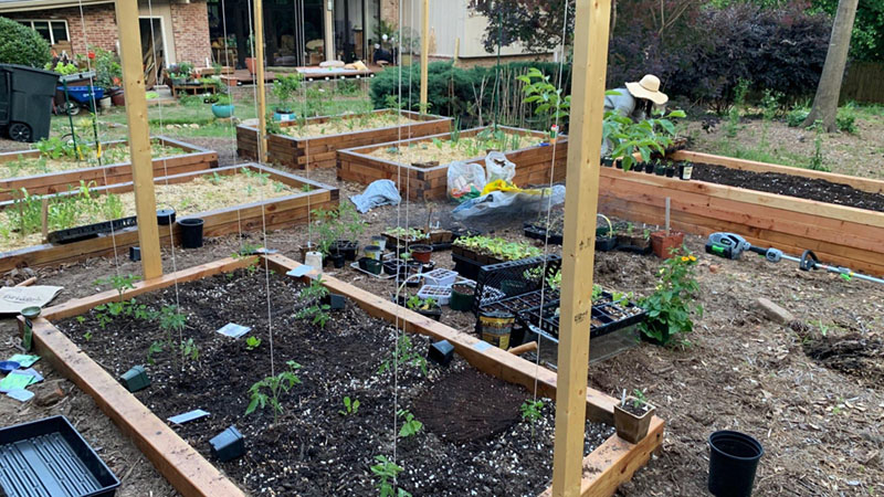 The Sustainability Benefits of Gardening 3