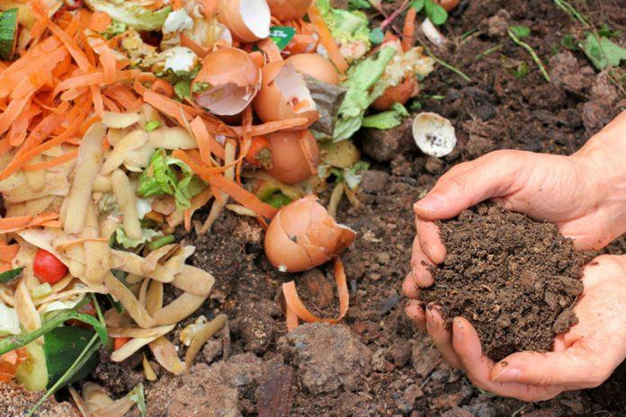compost faqs