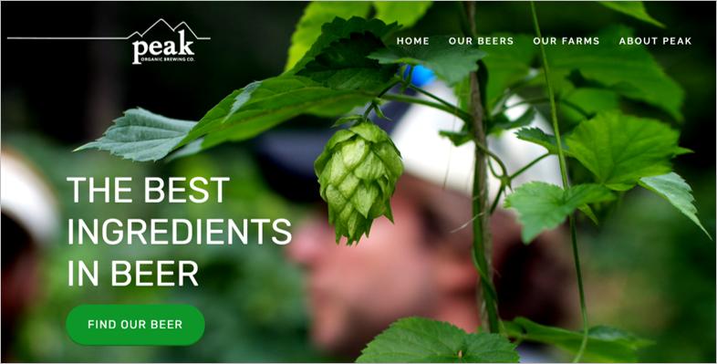 peak eco friendly beer