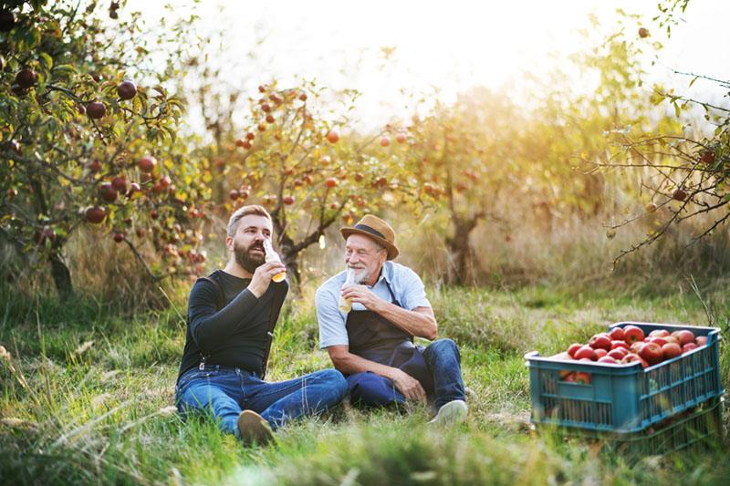 Eco-Friendly-Alcohol-cider