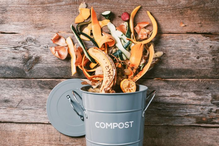 best eco friendly compost bins
