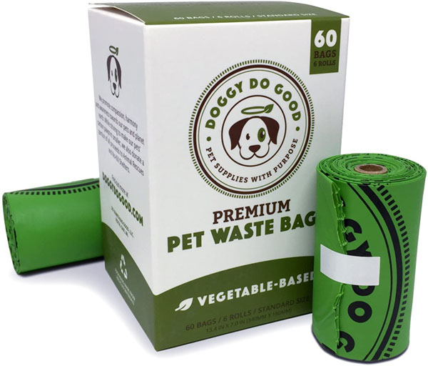 Most Sustainable Alternatives to Plastic 1