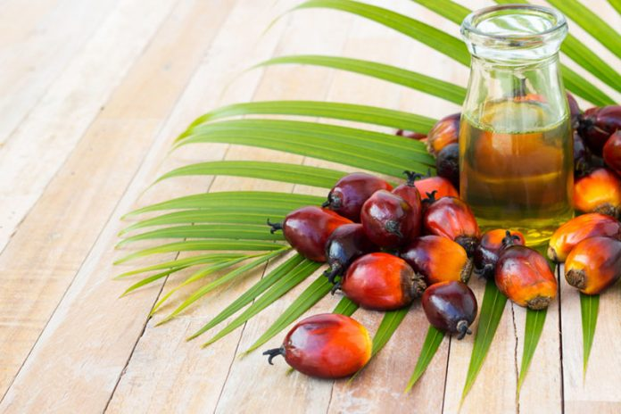 Sustainable-Palm-Oil-main