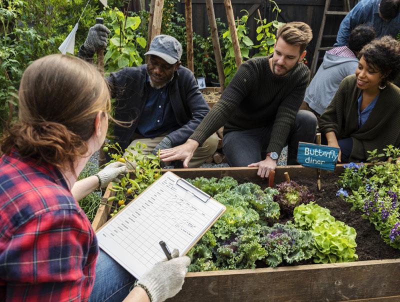community-garden-team