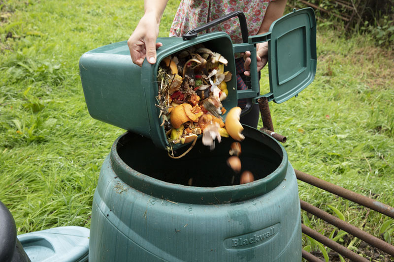 water saving lawn and garden compost